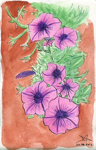 Flowers watercolor sketch