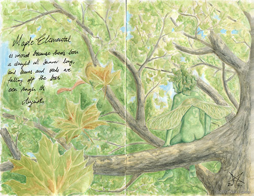 Maple elemental pencil and watercolor drawing