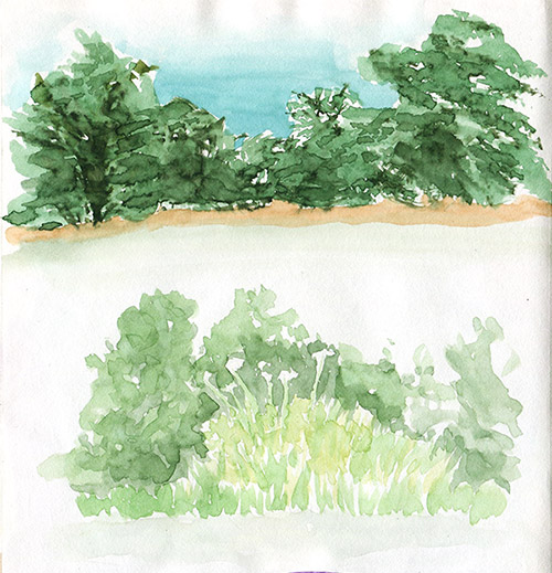 Trees and grass near the beach - watercolor sketch
